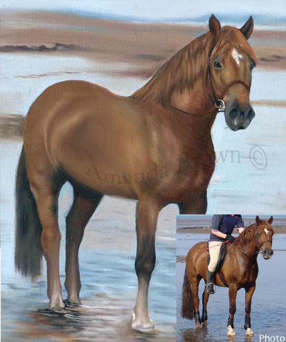 Darcy horse painting
