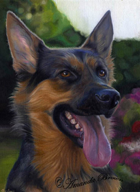 Gemma german shepherd painting